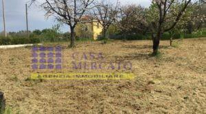Vendesi-Giuliano Teatino-terreno edificabile di circa 670 mq.